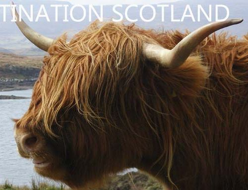 Planning your wedding in Scotland